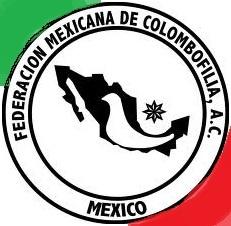 Logo of the Loft